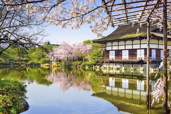 平安寺と桜