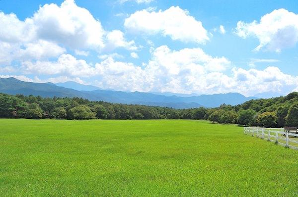 清里高原牧場